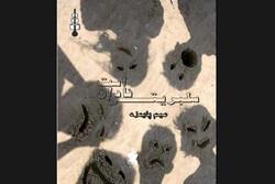 رمان ایرانی «سلبریتی نادان است» چاپ شد