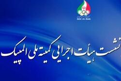 گزارش رئیس فدراسیون کشتی در مورد حضور تیم های ملی در المپیک