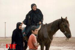 آغاز رسمی جشنواره جهانی فیلم فجر با یک فیلم خاطره انگیز