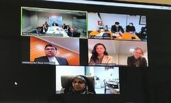 نخستین دور گفتگوهای حقوق بشری ایران و نیوزلند برگزار شد