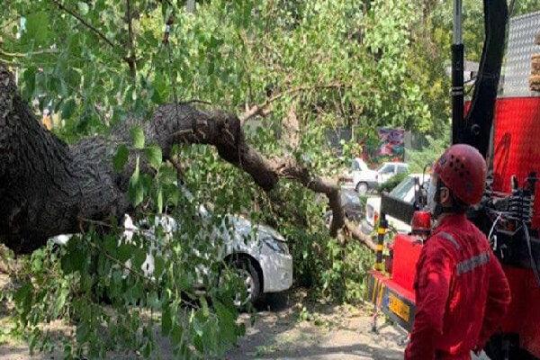 طوفان در ورامین جان یک خانم ۳۶ ساله را گرفت