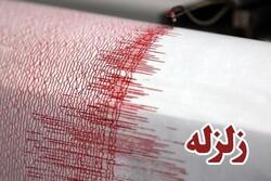 وحشت مردم از زمین لرزه ۴.۳ ریشتری در گناوه/ زلزله خسارتی نداشت