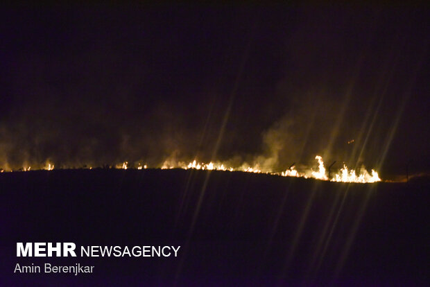 Fars eyaletinde çıkan orman yangını kontrol altına alındı