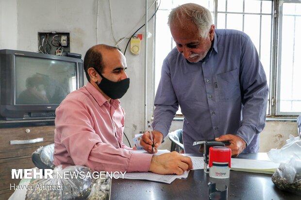 مرحله دریافت امضاء از کلزاکاران برای تحویل گرفتن کلزا توسط مراکز خرید