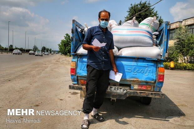 در دست داشتن نامه ها و برگه های تایید از طرف جهاد الزامی می باشد.