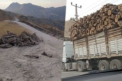 Baghdad, Erbil condemn Turkey for logging in Duhok