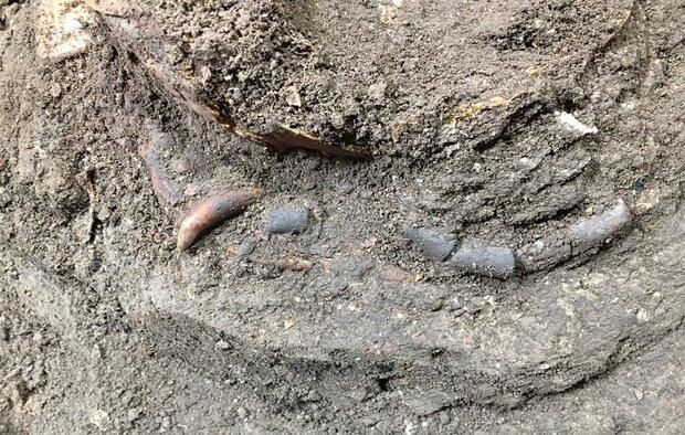 اسکلت کودک فراپارینه سنگی قدیمی ترین سند تاریخی مازندران است