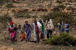 بیش از ۵ میلیون نفر در تیگرای اتیوپی نیازمند دریافت فوری غذا هستند