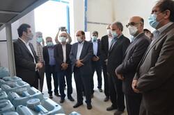 تولید و صنعت استان بوشهر حمایت میشود/ هدایت مناسب سرمایهگذاران