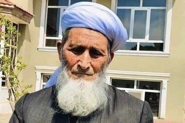 صوبہ ہرات میں علماء کونسل کے نائب سربراہ کو قتل کردیا گیا