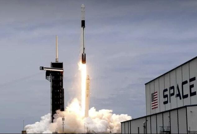 اسپیس ایکس ۵ هزار خرس آبی به فضا برد