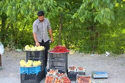 روستای هدف گردشگری«حیدرآباد» ایلام