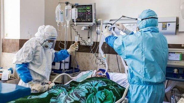 تسجيل 179 حالة وفاة جديدة بفيروس كورونا