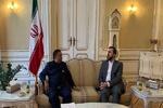 Iran's envoy meets with OPEC chief to discuss oil market