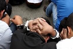 سارقان باغات اطراف کمالشهر دستگیر شدند