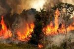 نمایی از آتش سوزی ارتفاعات تنگه هایقر فیروزآباد