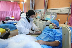 Coronavirus daily death toll in Iran stands at 112
