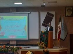 فعالیت ۳۰ هزار هنرمند صنایع دستی در گلستان/۷ بازارچه در حال احداث است