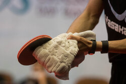 تشکیل سازمان تیمهای ملی در فدراسیون تنیس روی میز