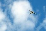 ABD'de küçük uçak düştü: 1 ölü, 5 yaralı