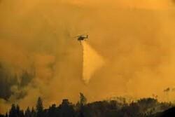 Wildfires rip through US State of Arizona in summer heat