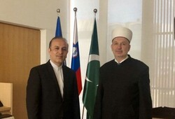 Iran welcomes continued coop. with Muslims around world: Amb.