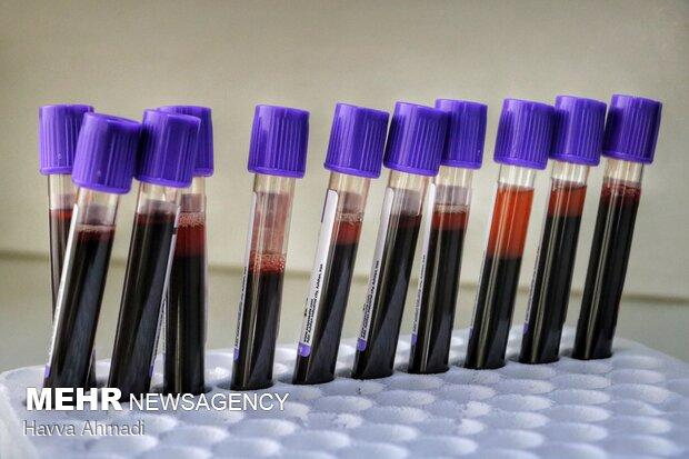 با اهدای یک واحد خون میتوان جان سه نفر را نجات داد؛ از یک واحد خون، گلبول خون فشرده گرفته میشود که در جراحیها کاربرد دارد، پس از آن پلاکت گرفته میشود که به مصرف بیماران سرطانی میرسد، پلاسمای خون نیز در بیماران کبدی و سوختگی استفاده میشود.