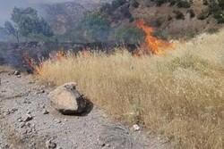 حملات توپخانه ارتش ترکیه به شمال عراق و آتش سوزی اراضی زراعی