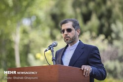 Iran to get votes of Iranians living in 133 countries: Spox