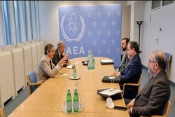 Iran's lead negotiator discusses JCPOA with IAEA cheif