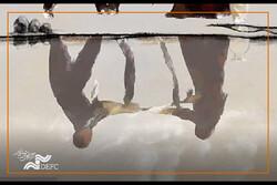 روایت بمباران سردشت در «بادها کجا میمیرند»/ انتشار پوستر