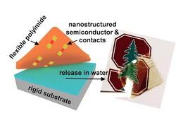 پوست الکترونیکی با ترانزیستور تک اتمی تولید شد