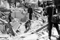 یادآوری یک قصه پر غصه/ ۳۱ خرداد مرثیه ای برای طارم
