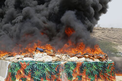 Police destroys 16 tons of seized drugs in S Iran