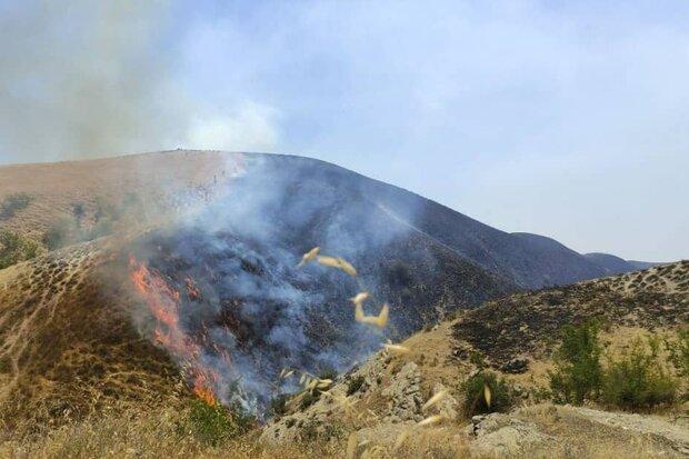 احتمال وقوع آتش سوزی در مراتع زنجان وجود دارد