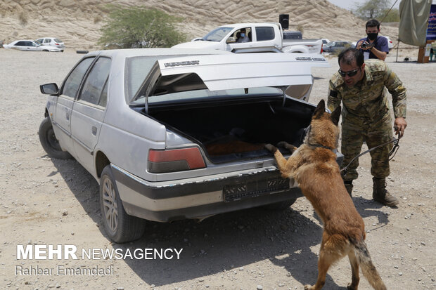 Police destroys 16 tons of illegal drugs in S Iran