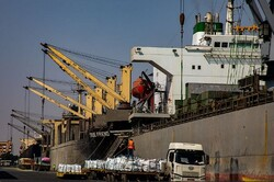 پهلوگیری یک فروند کشتی حامل نهادههای دامی در بندر شهید رجایی