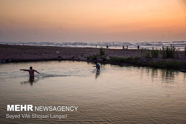 استخر ایجاد شده در کنار دریا به مساحت ۲۰۰۰ متر برای تکثیر ماهیهای صید شده