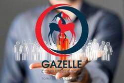 مشاوره مدیریت غزال چه خدماتی به سازمان ها ارائه می دهد؟