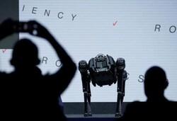 رونمایی از ربات هایی که با یکدیگر ارتباط برقرار می کنند