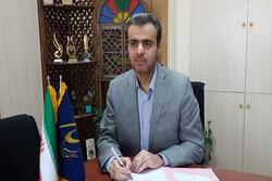 رئیس سازمان بسیج هنرمندان کشور منصوب شد