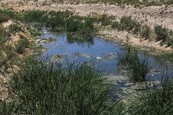 ابلاغ اخطاریه استفاده از فاضلاب خام به روستاهای حاشیه شیراز