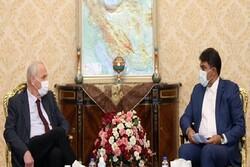 ایران وگرجستان دوازه کریدور ترانزیتی خلیج فارس _ دریای سیاه هستند