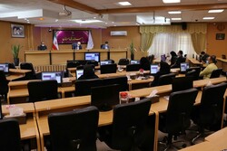 سهم زنان در ایجاد اشتغال استان سمنان به ۴۰ درصد برسد