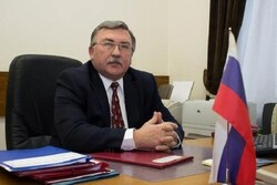 Russian envoy stresses need to keep IAEA cameras working