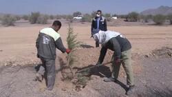 ساخت سازه حفاظتی ذوب آهن اصفهان برای امنیت فضای سبز