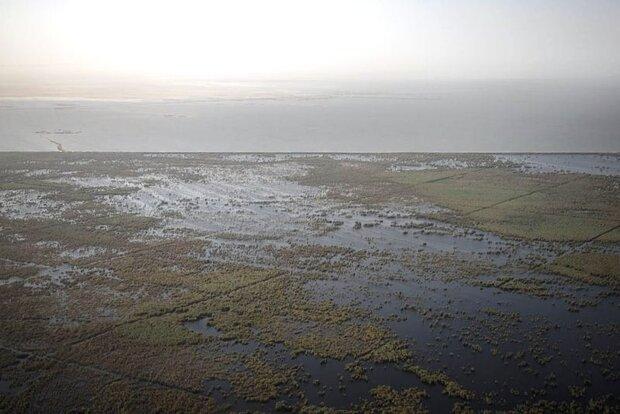 نبود مدیریت اکوسیستم محور در هورالعظیم/ حق آبه باید رعایت شود