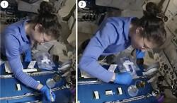اصلاح ژنتیک در فضا آزمایش شد
