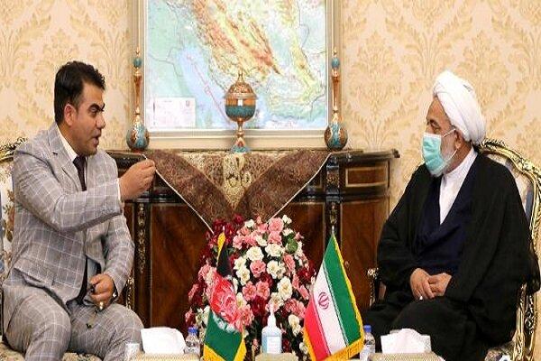 مغربی اور سامراجی طاقتیں، مضبوط افغانستان سے کبھی خوش نہیں ہوں گی