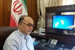 'Iran policies towards Axis of Resistance not to change'